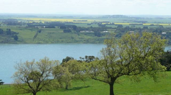 Picture of Lake Gnotuk from  Camperdown's Guilfoyle gardens
